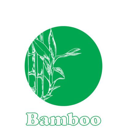Bamboo vector sketch on green circle