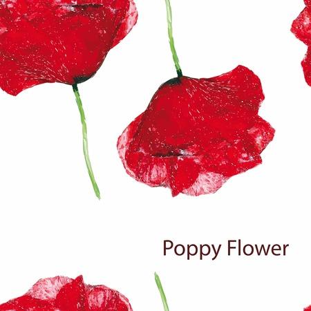 Poppy flower seamless pattern vector illustration.