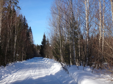 Winter road in suuny day photo
