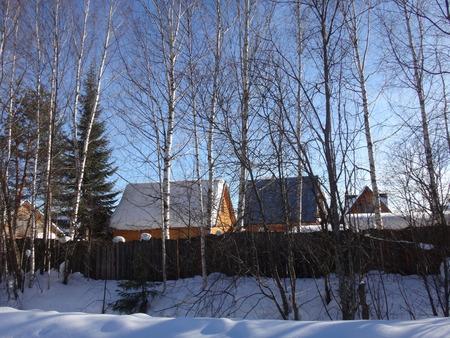 path cottage garden: winter willage
