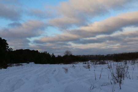 blu sky: Dark forest, blu sky and clouds in winter day