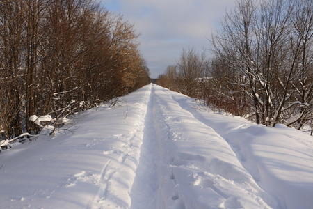 long road: Long road in snow in sunny winter day Stock Photo
