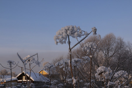 log cabin in snow: Village in a winter day and snow