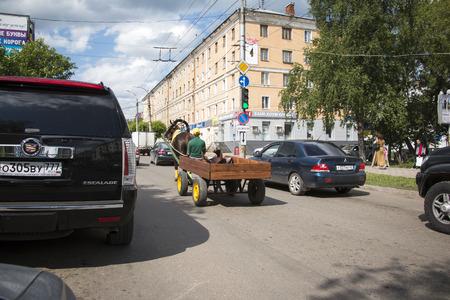 kirov: Russia, Kirov - June 11, 2016: Horse on the street Oktyabrskiy Prospect in Kirov city in 2016