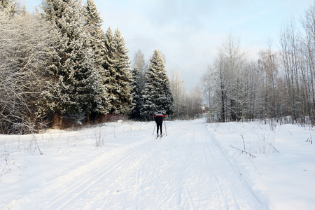 ski track: Ski track for skiers in the forest in a winter day Stock Photo