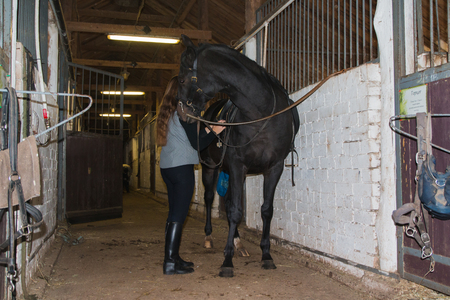 Big horse and female groom in the stable in the weak light