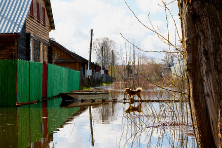 Floods in the spring and a village house in the water in Russia in a cloudy day Stock fotó