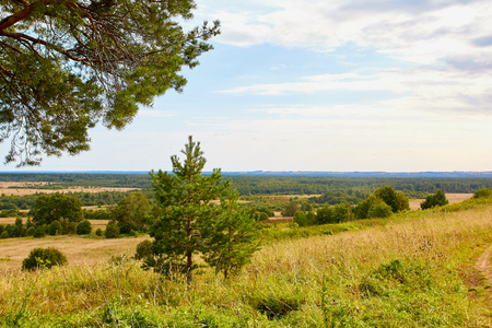 Beautiful view from the height of the landscape with fields and forests in summer or autumn day