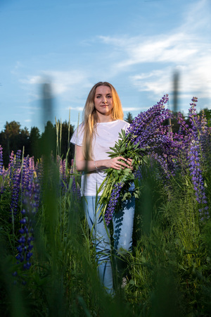Blonde girl in a field of purple lupines in a summer evening