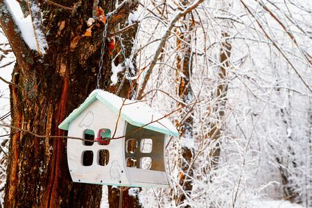 Beautiful feeder for bird in winter forest. White landscape in a cold day Stock Photo