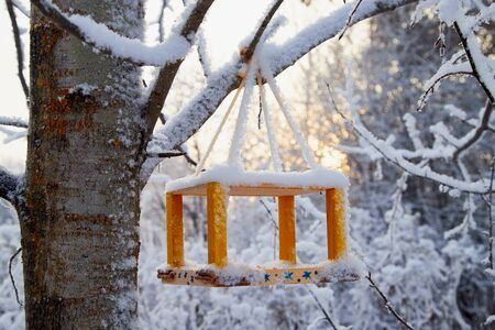 Beautiful feeder for bird in winter forest. White landscape in a cold day 版權商用圖片