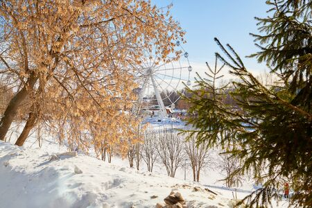 Winter landscape in good day. Park with snow and yellow, trees. Sunny day in early spring in Russia