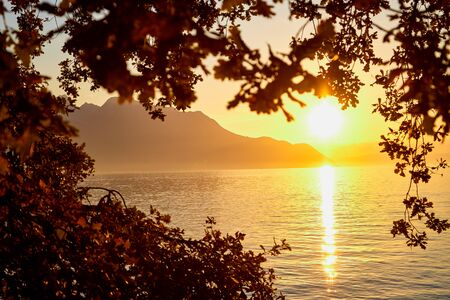 View on lake and mountains scenes through branch of tree during sunset in a summer evening