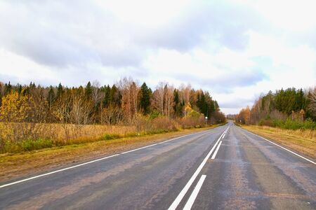 Asphalt road with white markings going away and yellow field and forest at the edges. Beautiful nature during travel Imagens