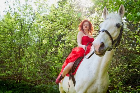 Girl in beautiful red dress on white horse in Park or forest. Photo shoot models and fashion. Unusual posing with an animal in the summer day on nature Фото со стока