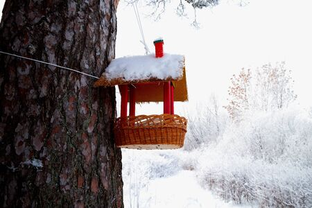 Beautiful feeder for bird in winter forest. White landscape in a cold day 写真素材