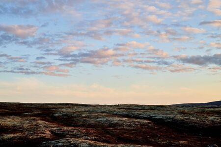 Tundra landscape with moss, glass and stouns in the north of Norway or Russia and blue sky with clouds in a summer, autumn or spring day 版權商用圖片