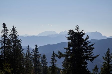 Mountain peaks visible through the trees on a good summer day. Top of mountain and blue sky background