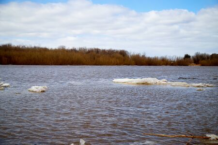 Spring landscape with river, yellow grass on the shore, trees without leaves and blue sky with white clouds in the background. Ice drift and flood on the river