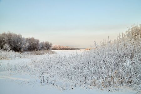 Landscape with tree in the foreground and field in the distance on a winter day Archivio Fotografico - 137328225