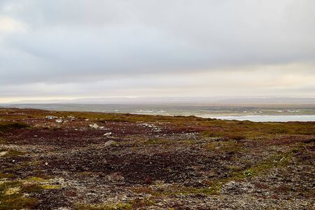 Tundra landscape in the north of Norway or Russia in a summer, autumn or spring day Archivio Fotografico - 137329762