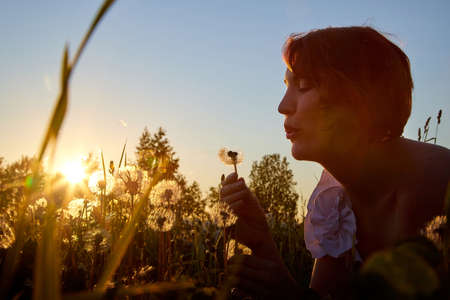 Young cute pretty woman in a meadow with dandelion flowers in the light of the sun at sunset. Girl having walk and fun on nature landscape during sunset Stockfoto