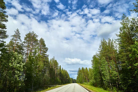 Beautiful landscape with blue sky, white clouds and the road that goes to the horizon with the forest and trees on the roadsides