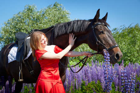 Slim girl in red dress standing with brown horse outdoors on nature on a Sunny day and green trees, blue lupins and sky in the background. Young woman hugging and having fun with horse on nature