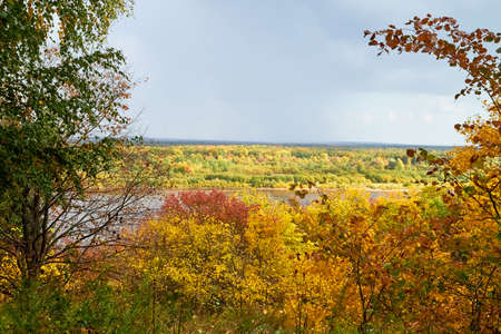Autumn landscape with top view on the river through branches of trees with yellow leaves and wky with clouds in autumn day