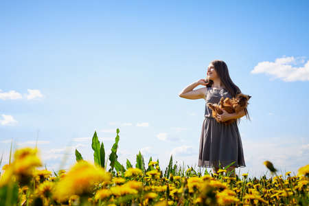 Beautiful young woman on a field with green grass and yellow dandelion flowers in a sunny day. Girl on nature with yellow flowers and blue sky