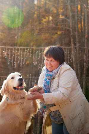 A plump woman with a white Labrador dog walking in a Park or forest on a Sunny autumn day Фото со стока