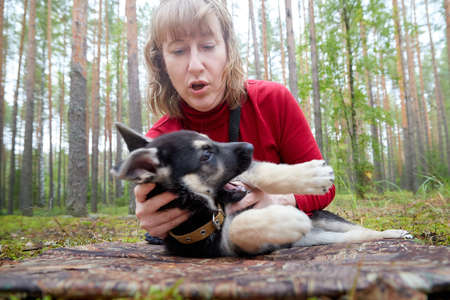 A girl in a red sweater playing with a small German shepherd puppy in the forest Zdjęcie Seryjne