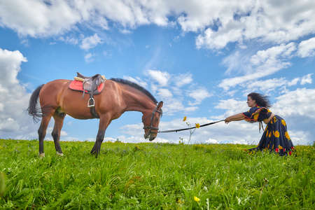 Beautiful gypsy girl leads a stubborn, unruly horse in field with green glass in summer day and blue sky and white clouds background. Woman in ethnic dress tries to steal a horse. Model and big animal Stockfoto