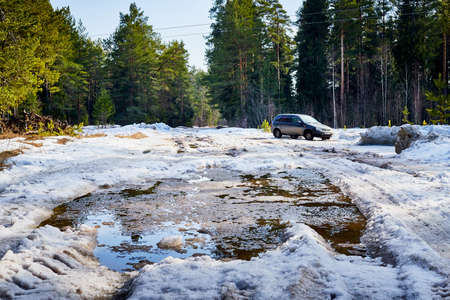Dirty road in the snow in the middle of spruce and pine forests in day of early spring