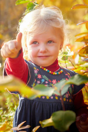 Portrait of young little girl with blonde hair in an autumn park on a yellow and orange leaf background Stockfoto