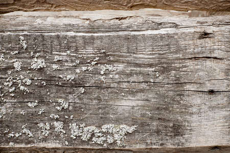 Old brown board for background or texture. Wooden background with horizontal board