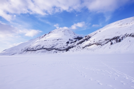 winter landscape photo
