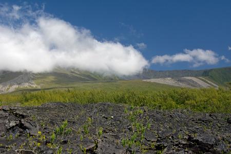lave: Lava Eruption at La Fournaise on Reunion island, Coulee de Lave