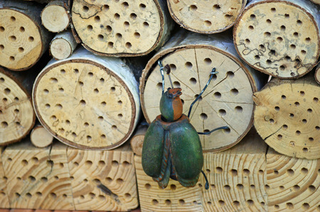 Hotel for insects to overwinter