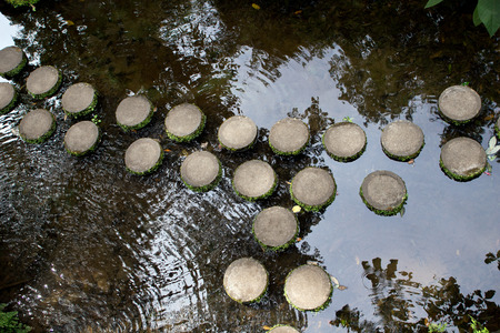 Stepping Stones, Monte Palace Tropical Garden, Funchal, Madeira Island photo