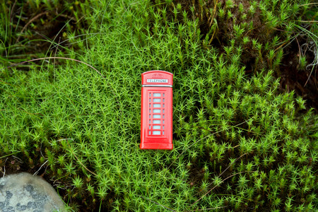 cabina telefonica: Cabina de tel�fono roja en el musgo