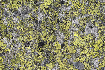 deteriorate: Grunge old stone background