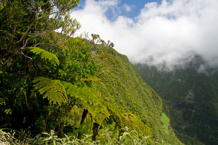 Waterfall in Reunion - Trou de Fer photo