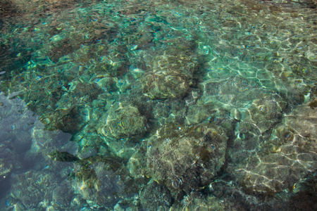Crystal clear water photo