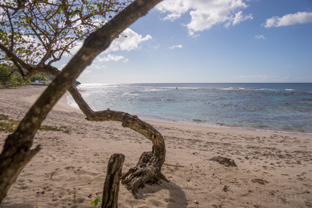 guadeloupe: Tropical beach of Guadeloupe Stock Photo