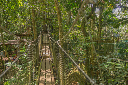 suspension: Suspension bridge in the forest Stock Photo