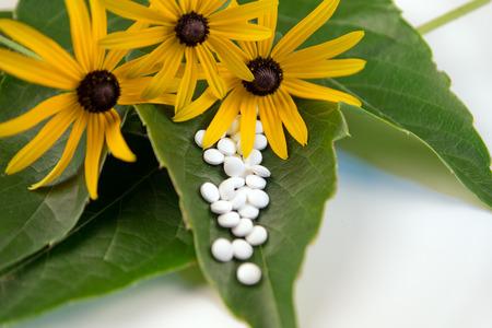 homeopatia: La medicina alternativa y la homeopat�a con las p�ldoras a base de hierbas Foto de archivo