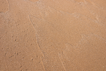 sand texture: Sand Texture - Closeup of sand pattern of a beach in the summer