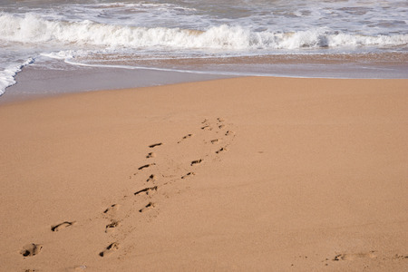 footsteps: Footsteps in the sand at the beach