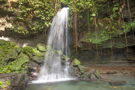 Emerald pool, Dominica in the Caribbean deep in the rainforest